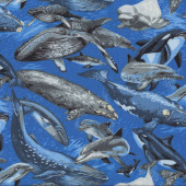 Whales Dolphins Swimming in Ocean Orca Humpback Wildlife Quilt Fabric