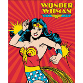 Wonder Woman DC Comics Quilt Fabric Panel