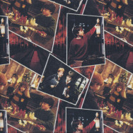 Harry Potter Hermione Ron Playing Quilting Fabric
