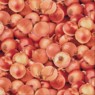 Brown Onions Vegetable Kitchen Quilting Fabric