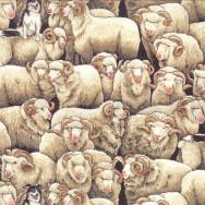 Merino Sheep Border Collie Dog Farm Animal Country Quilting Fabric