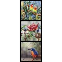 Australian Birds Rosella Fairy Wren Kingfisher on Black Quilting Fabric Panel