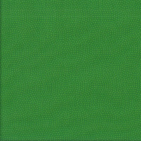 Tiny Dots Spots on Green Spin Basic Quilting Fabric