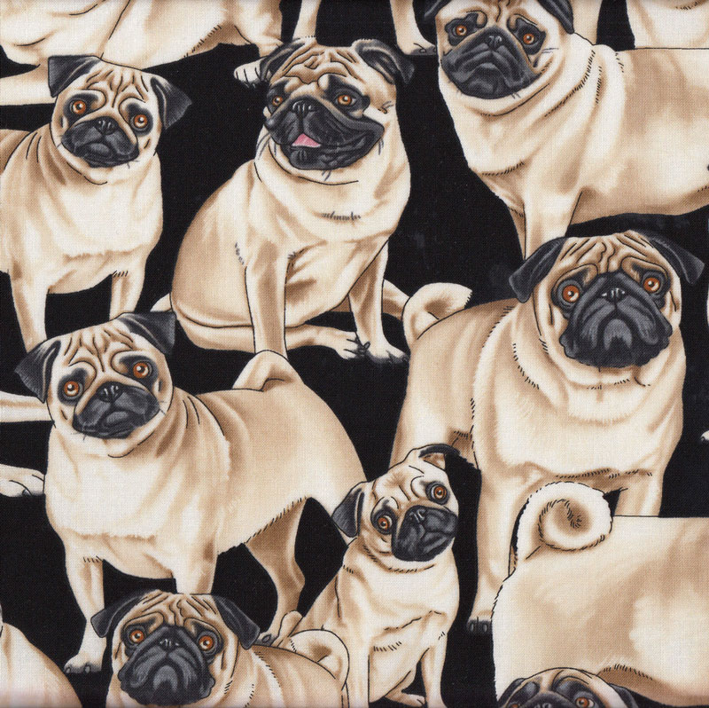 Pugs Dogs Pet Animal Quilt Fabric Find A Fabric